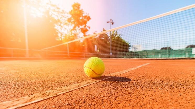 La France en quart de final de la Coupe Davis tennis