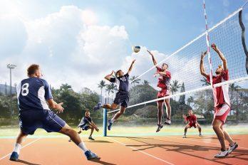 La Pologne championne du monde de volley